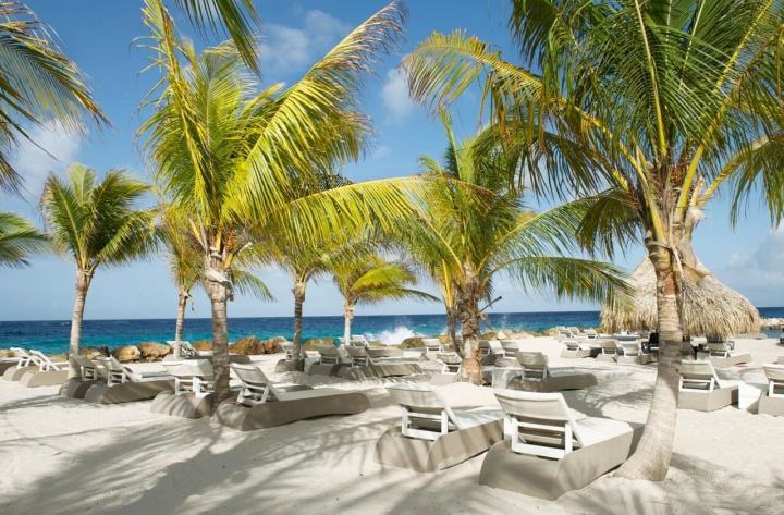Livingstone Jan Thiel (Curacao), 8 dagen