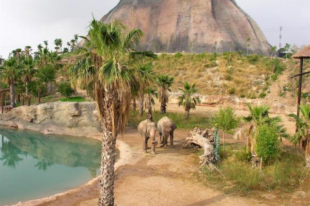 Magic Natura Waterpark Resort
