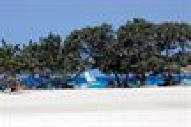 Gaviota Playa Pesquero